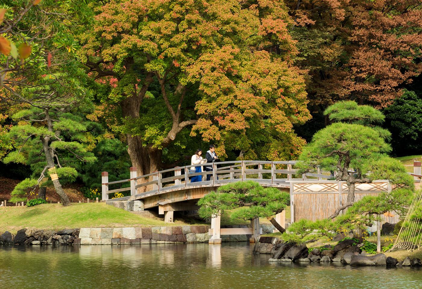 Photo Walk at Shoyoen Japanese Garden Dubbo