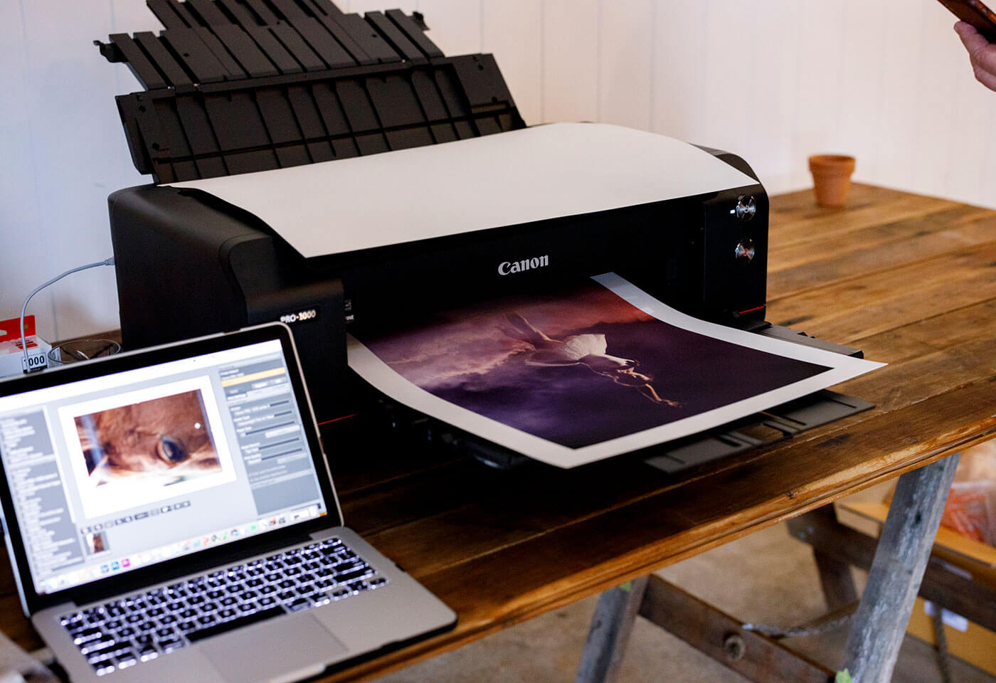 Canon printer for Collective festival gallery