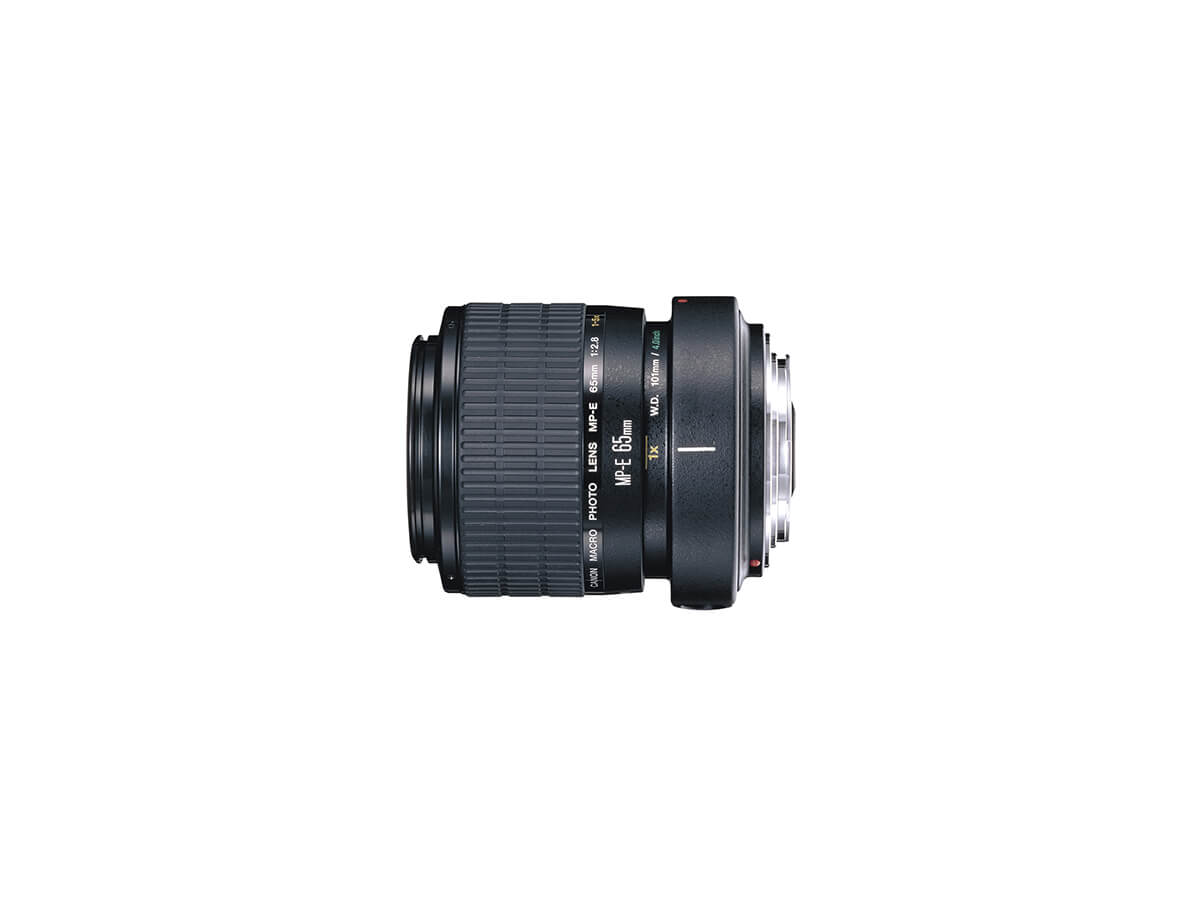 Side view of Canon MP-E65mm f/2.8 1-5x Macro lens