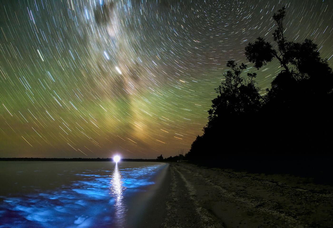 Bioluminescence at Gippsland Lakes