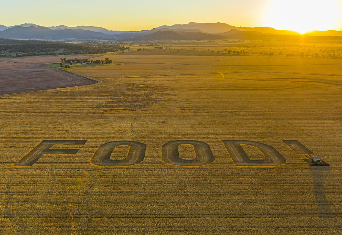 Landscape image of FOOD! written in a crop