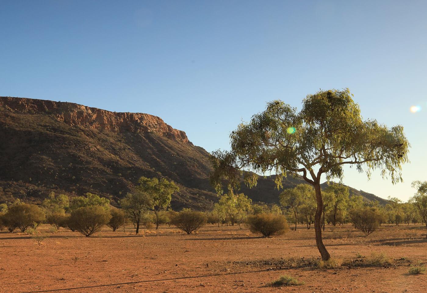 Sunset Photography at Desert Park by Steve Huddy