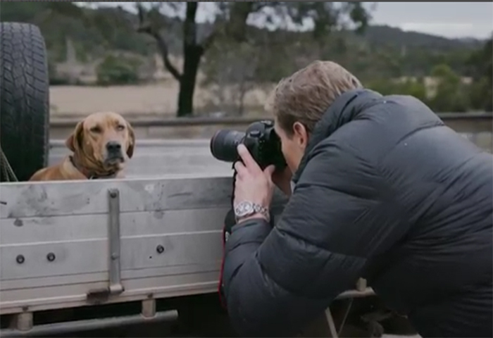 Image of Dr Chris Brown taking a photo of dog in ute