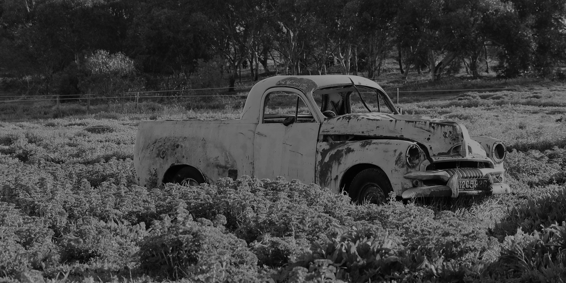 Black and white photo of an old beat up car in a field