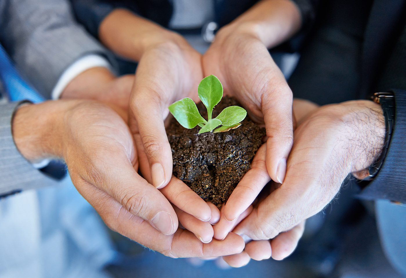 People with hands together holding soil and plant
