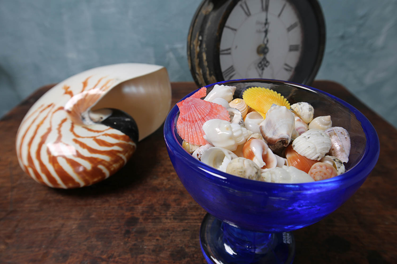 Image of shells in a bowl and a clock taken with the Canon EF 11-24mm f4L USM wide zoom lens
