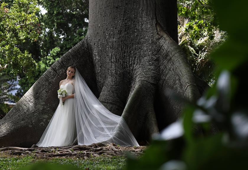 Wide shot image of bride standing under tree