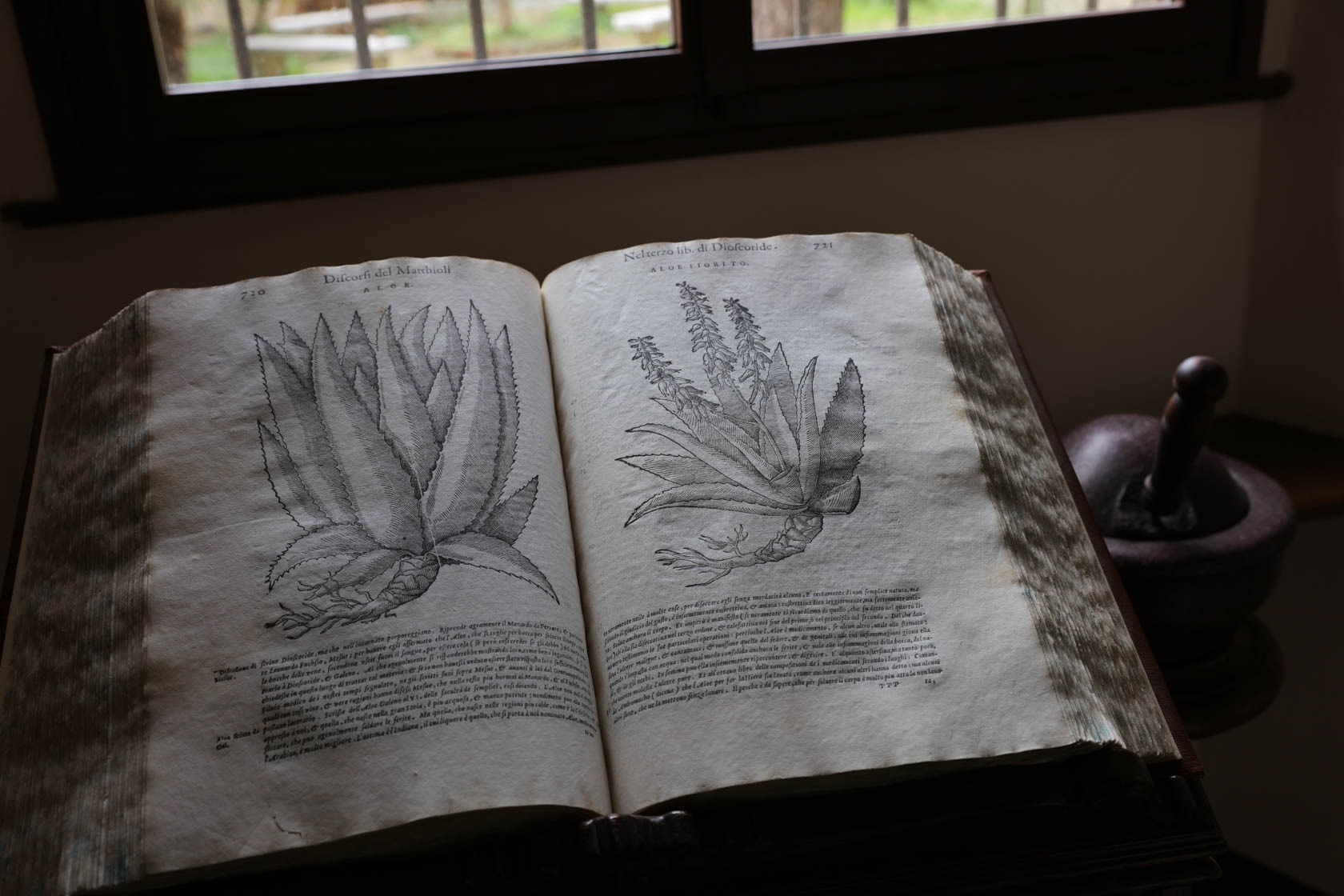 Botanist book taken by Canon EOS 5DS DSLR camera