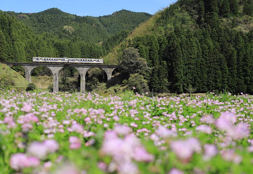 Country train crossing a bridge - sample photo by Canon EOS 6D Mark II