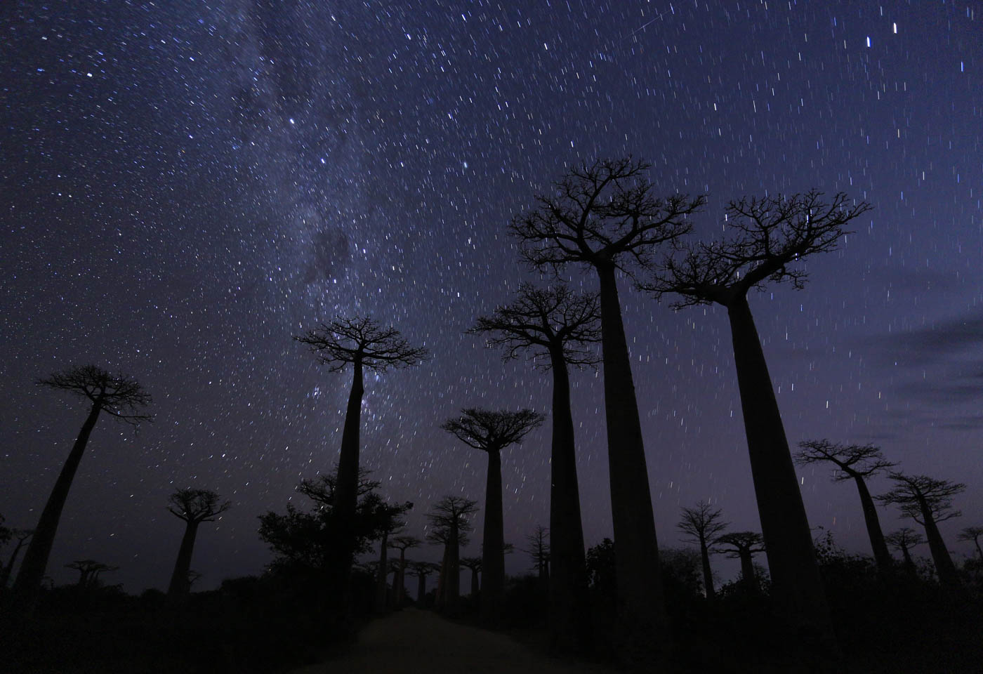 Nightscene with stars in Madagasgar taken with Canon EOS 6D DSLR camera