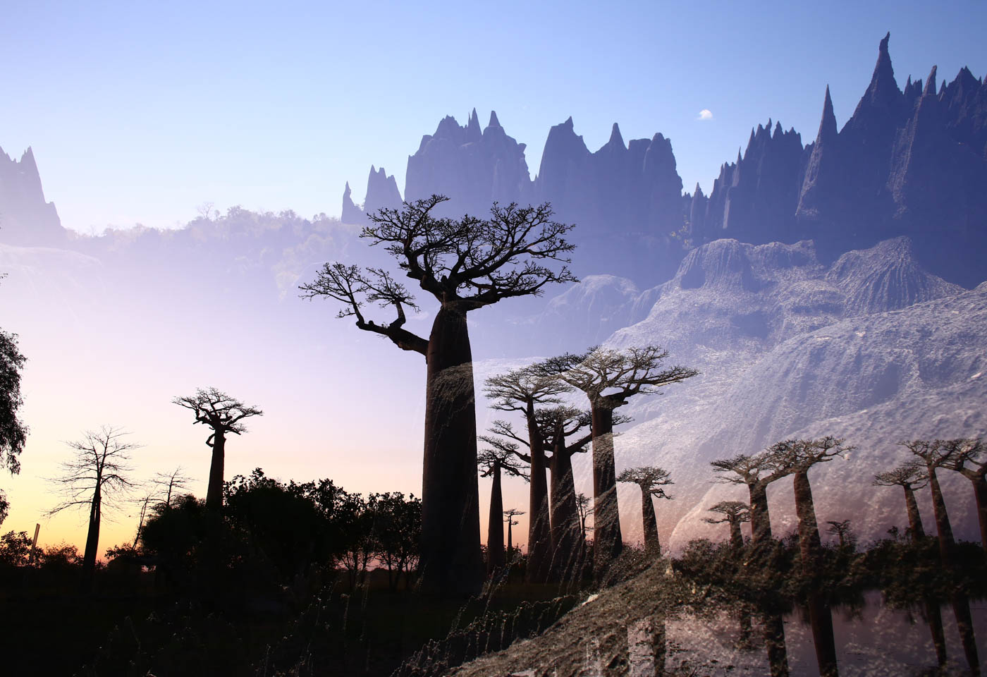 Multiple exposure trees and mountains in Madagasgar taken with Canon EOS 6D DSLR camera