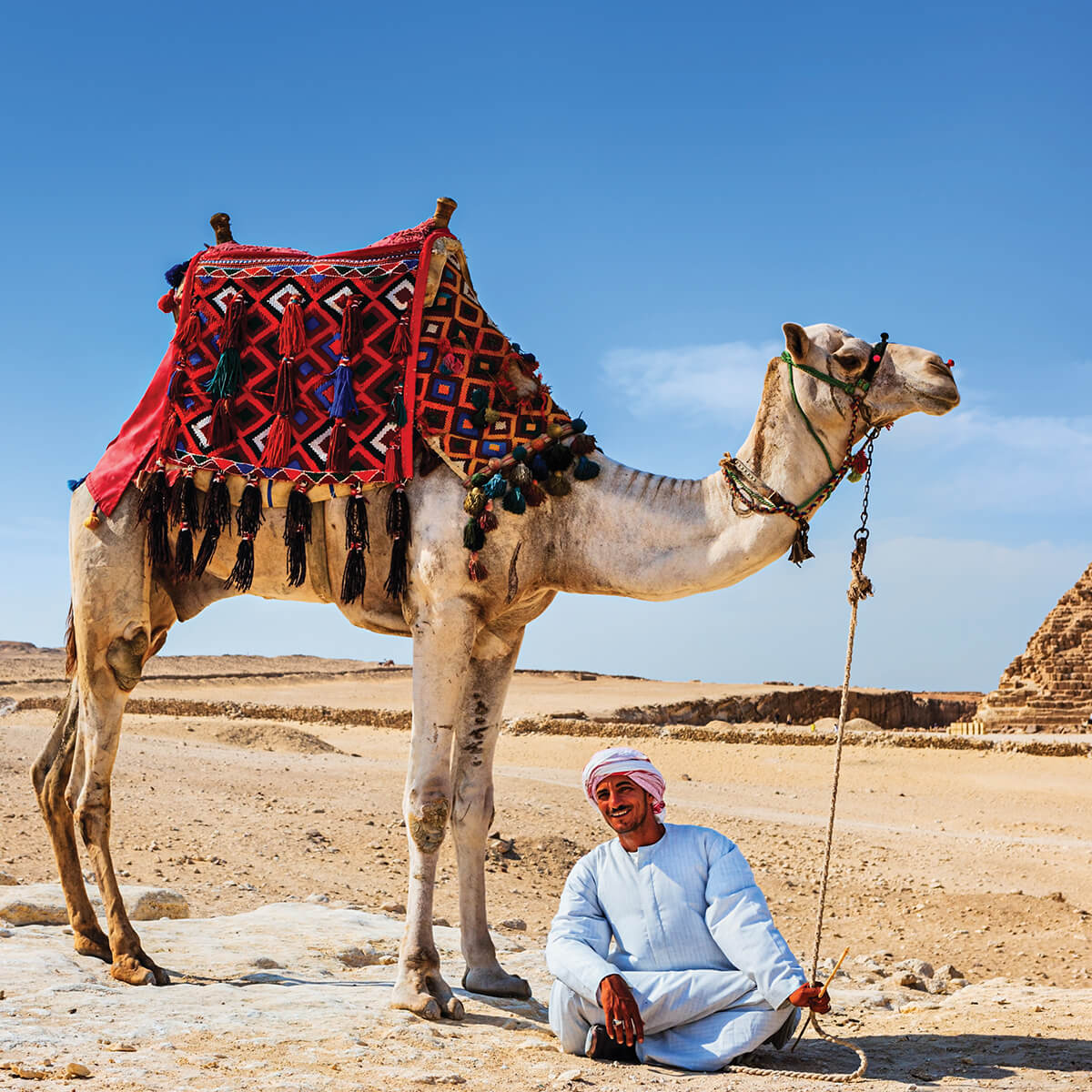 Portrait image of man and camel