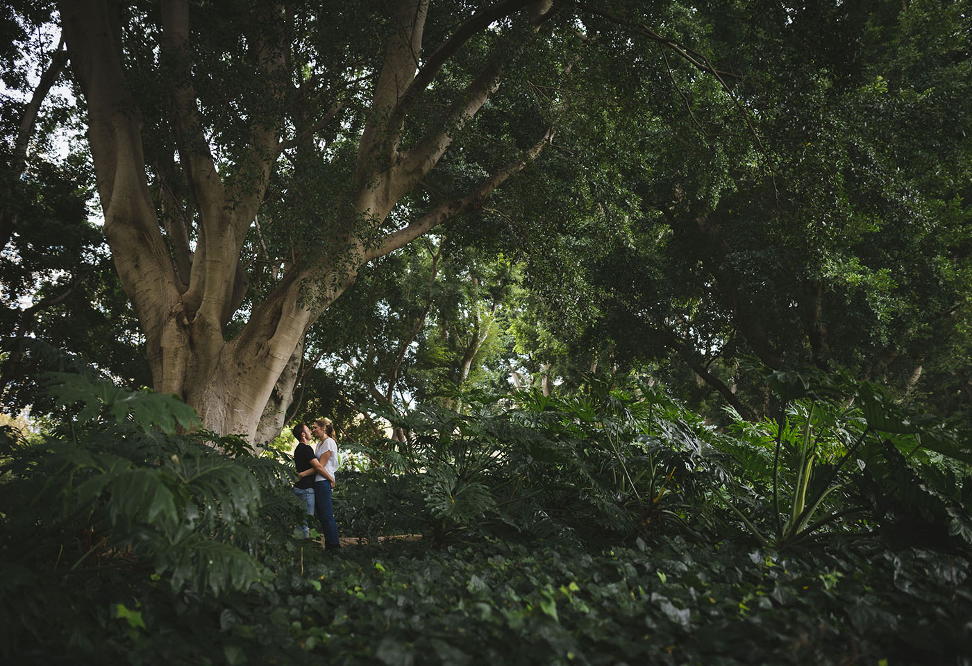 Landscape image of couple in a park