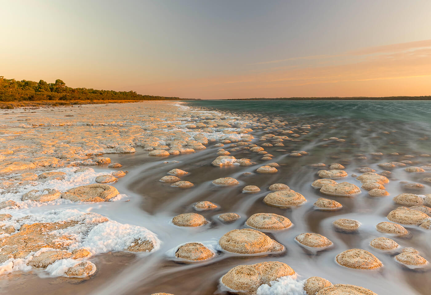 Thrombolites photography by Steve Huddy