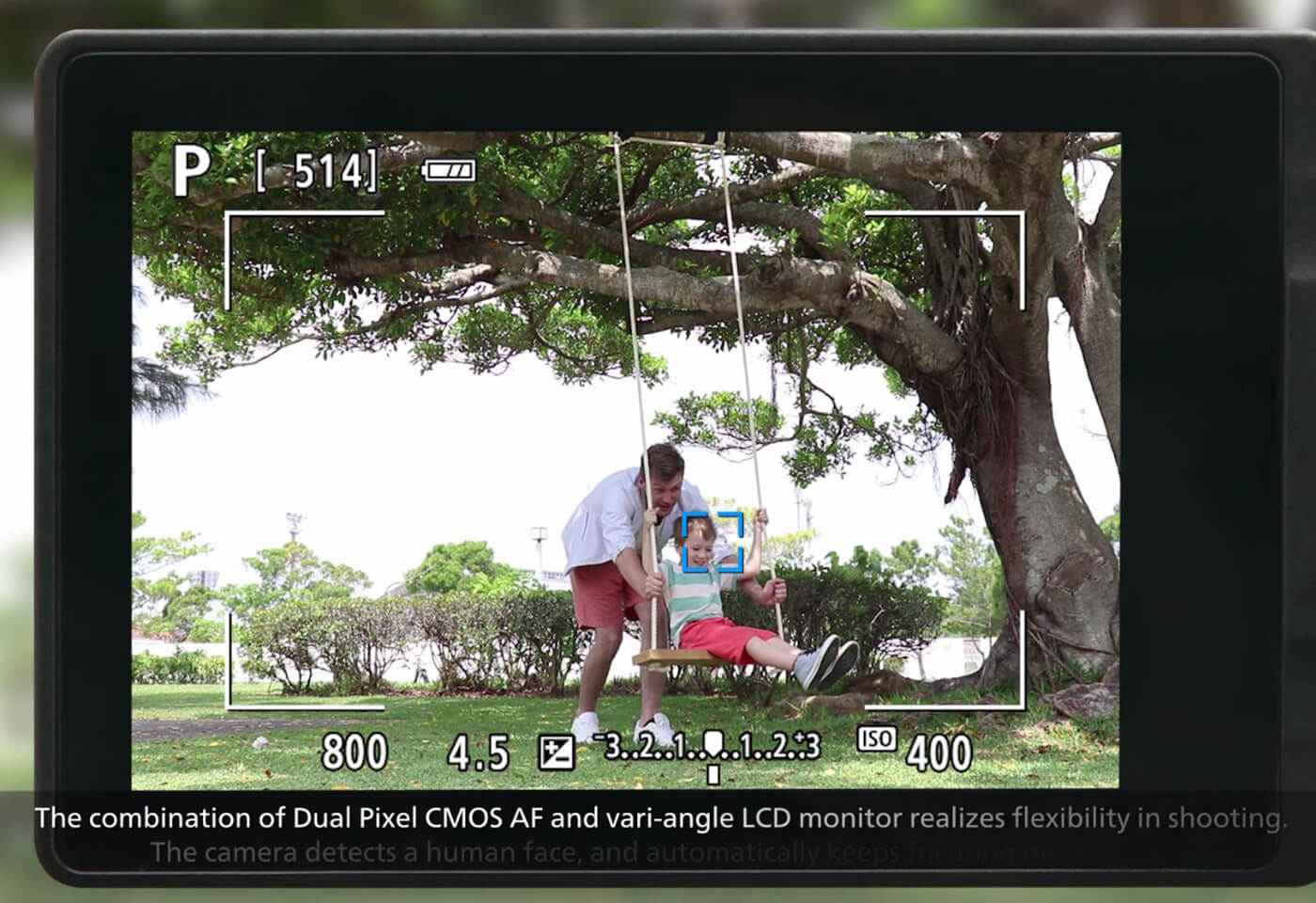 Cano EOS 6D Mark II demonstrating LCD in live view mode