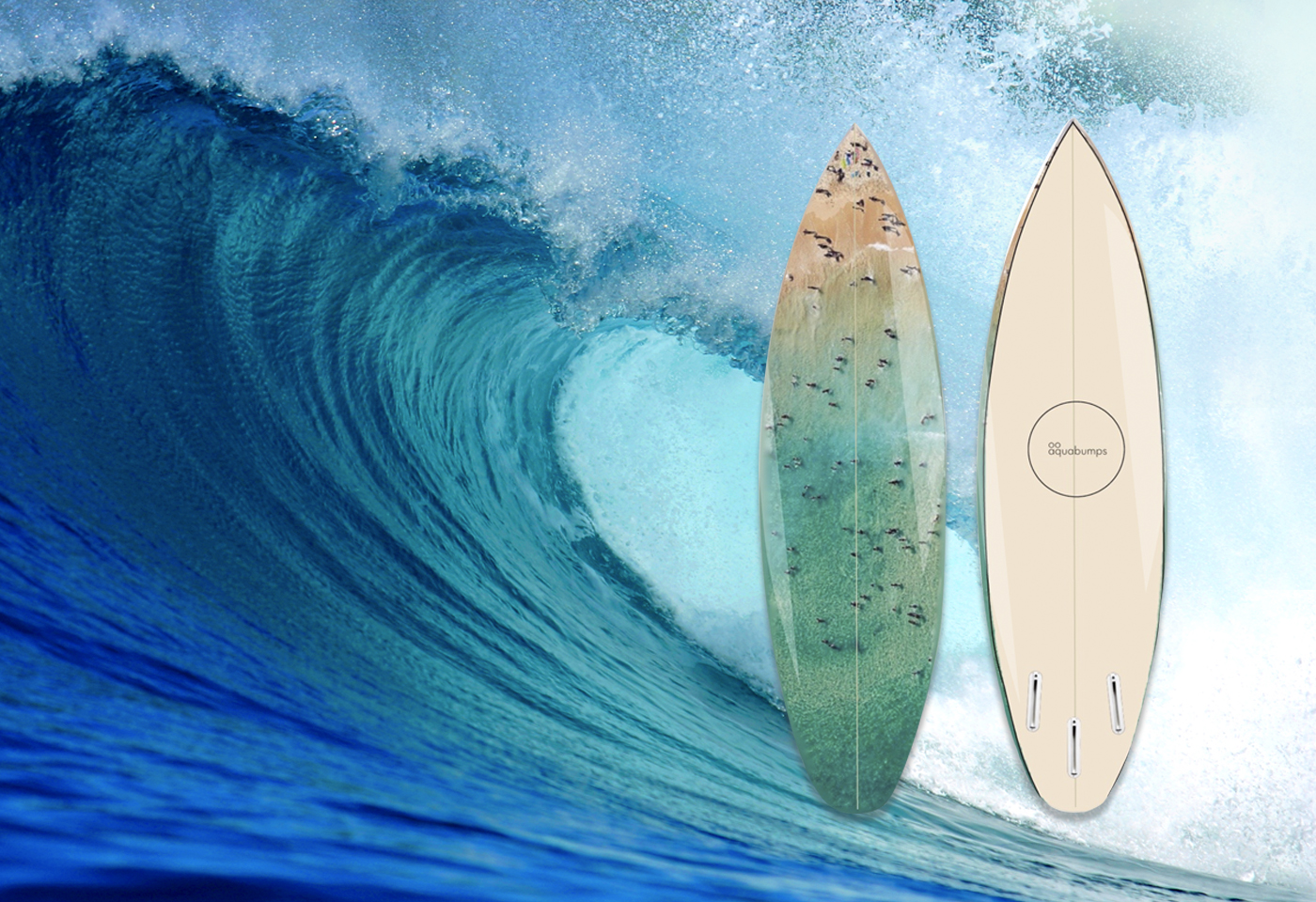 Win an Exclusive Surfboard banner