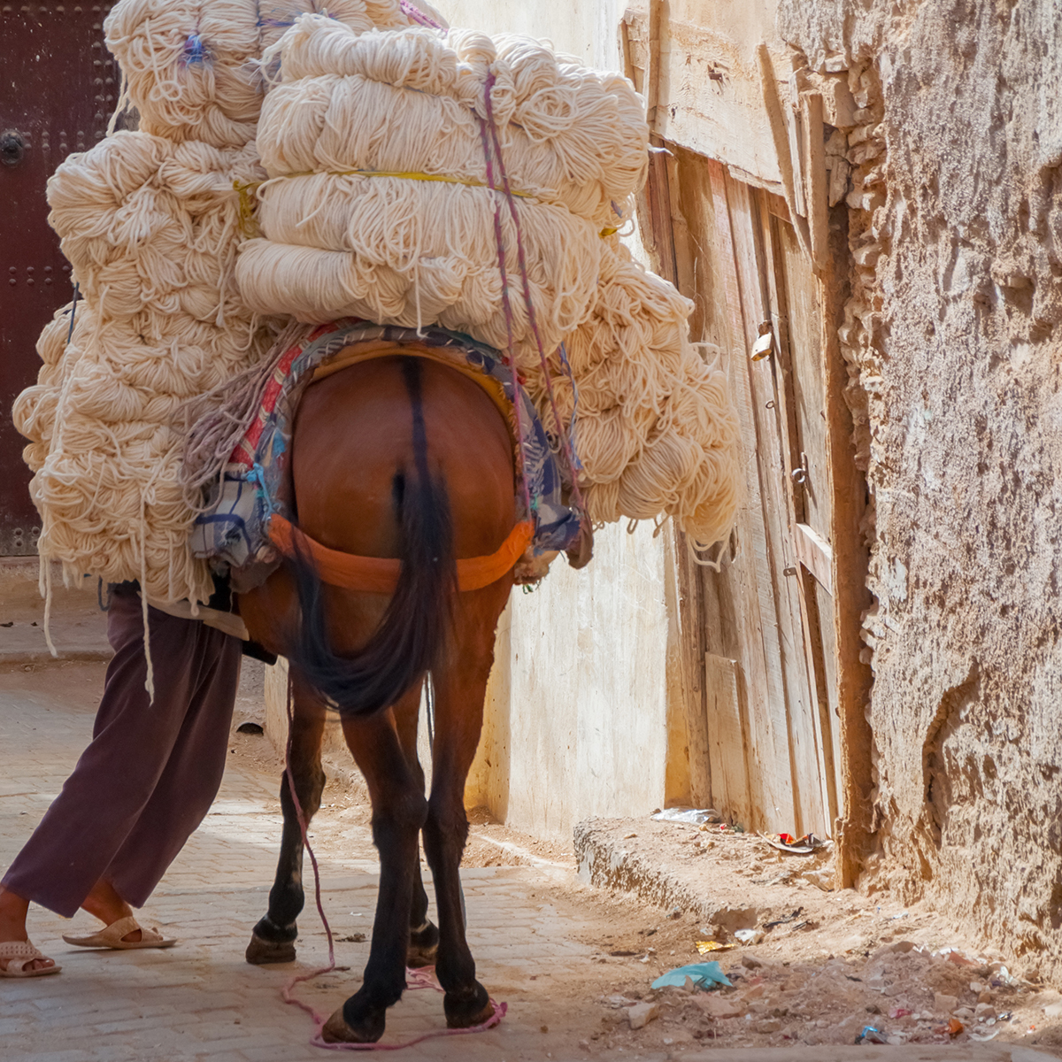 Donkey carrying heavy load of material