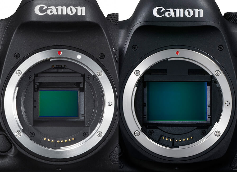 The Advantages of a Full Frame Camera | Canon Australia