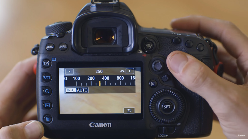Setting Up Your Canon Camera for Video Shooting