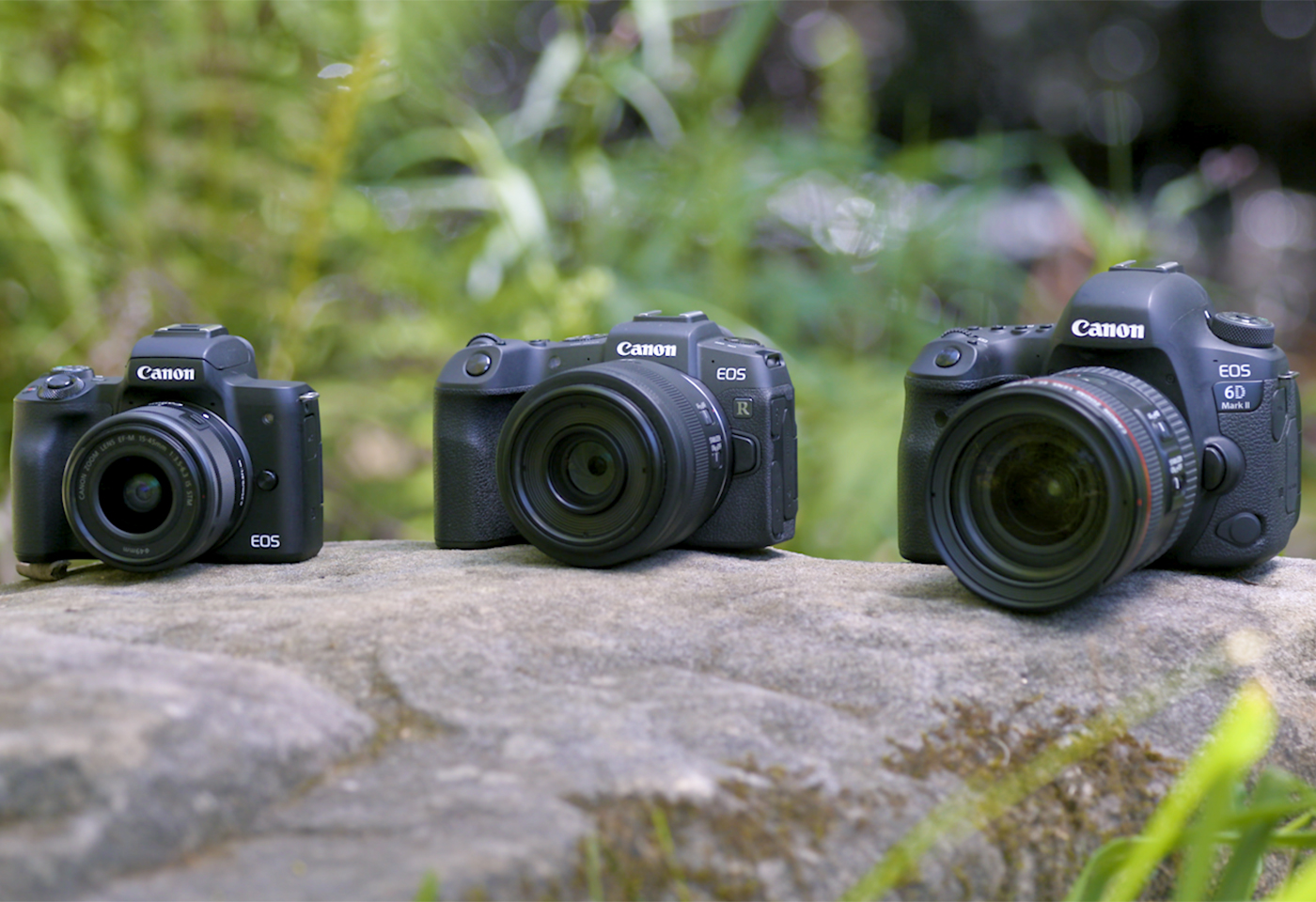Canon Mirrorless and DSLR cameras