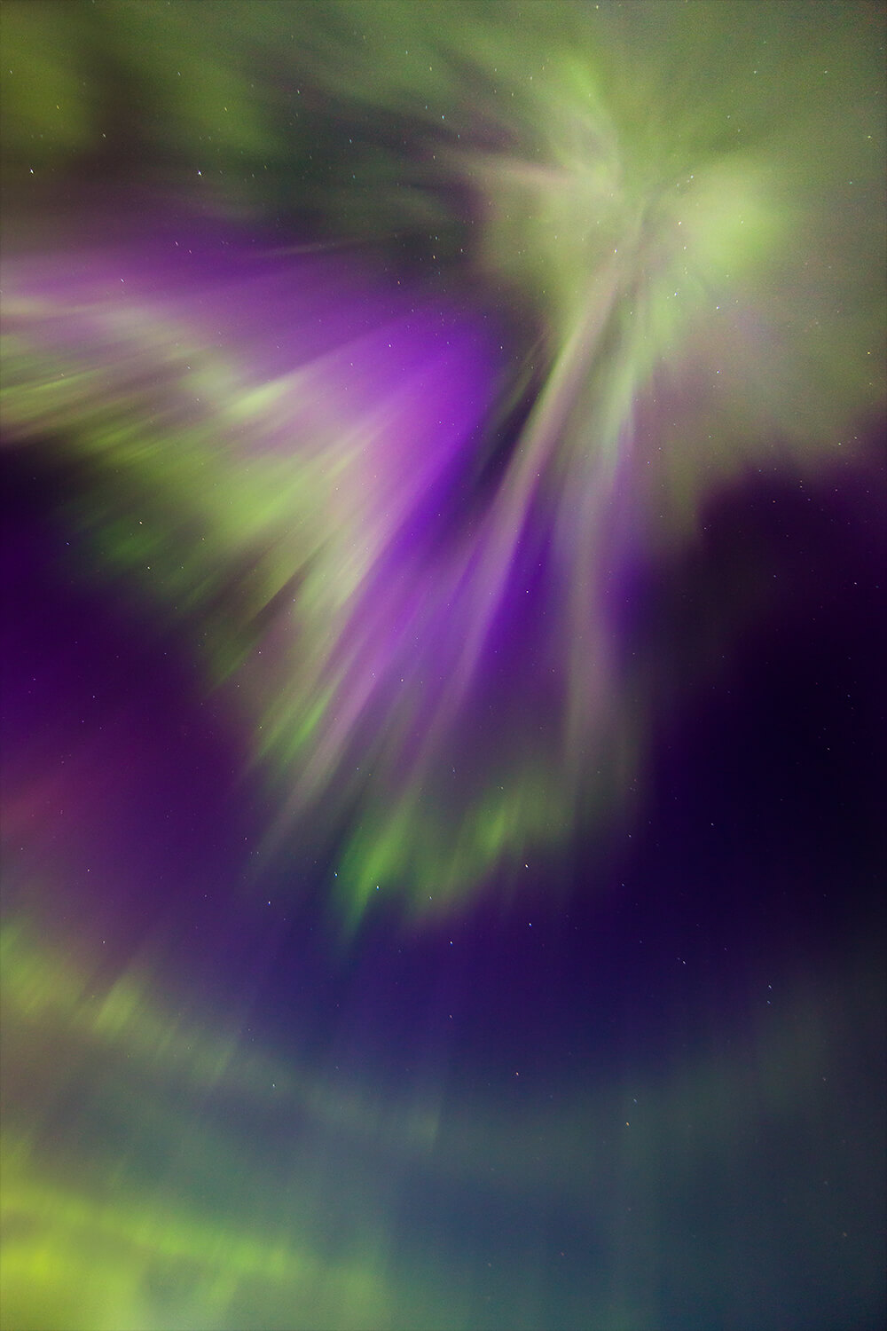 photo of the Northern lights with green and purple tones. Shot by Neil Bloem