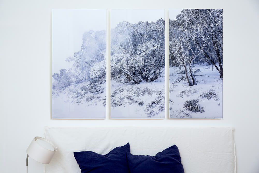 three images printed using Photo Pico