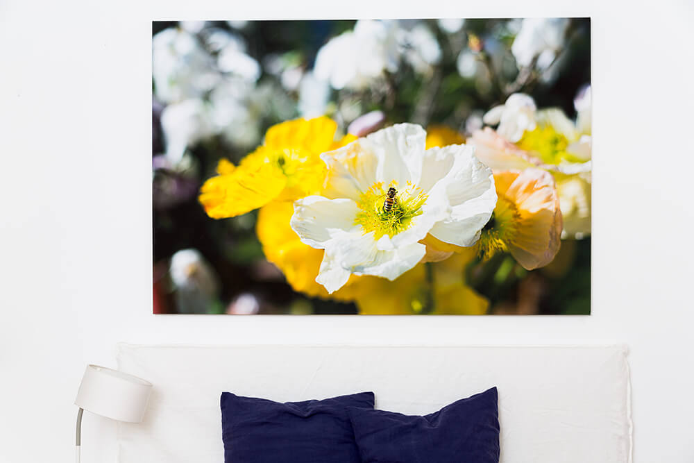 large canvas print of a bee on flower above bed