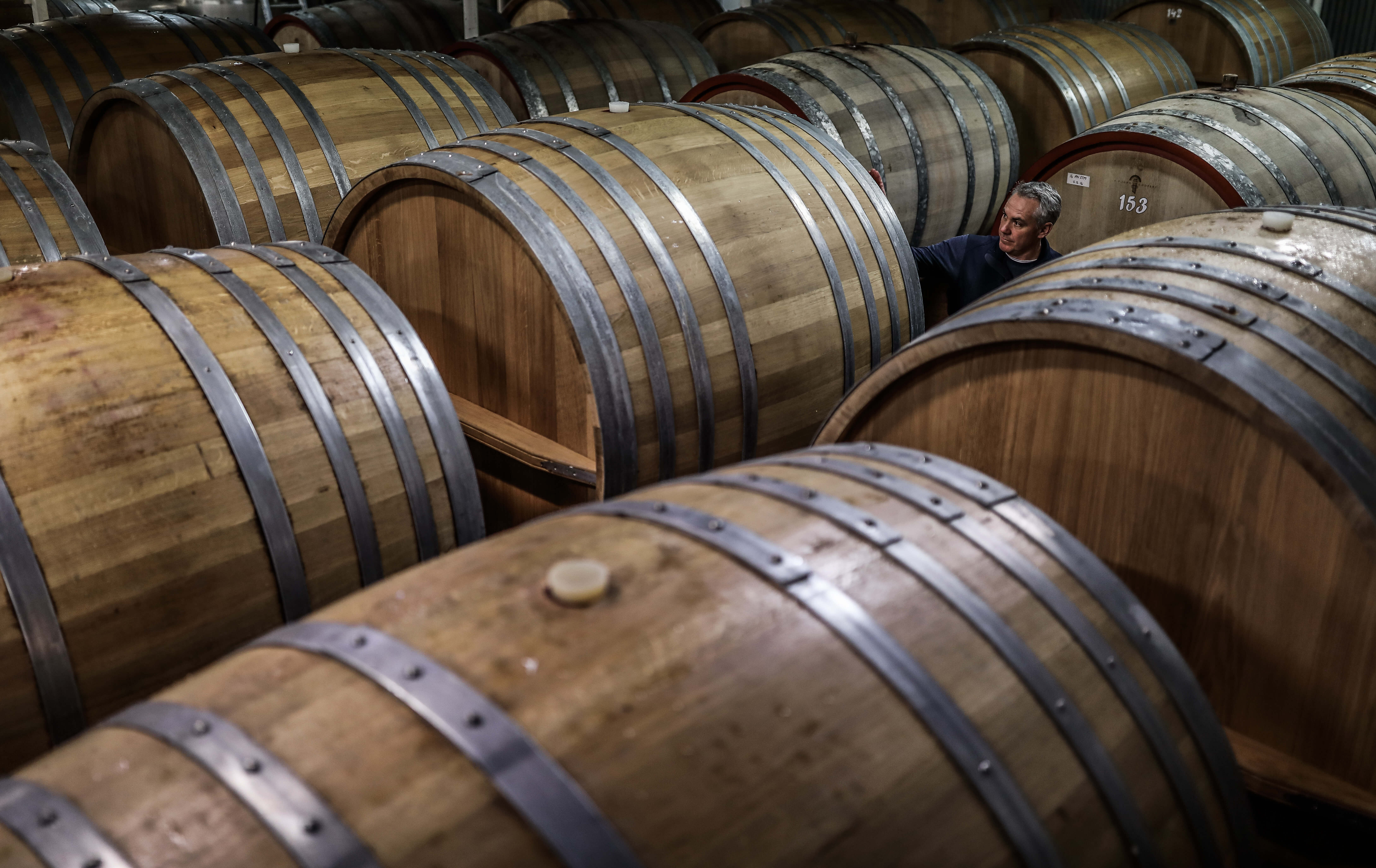 Portrait of a winemaker with wine barrels