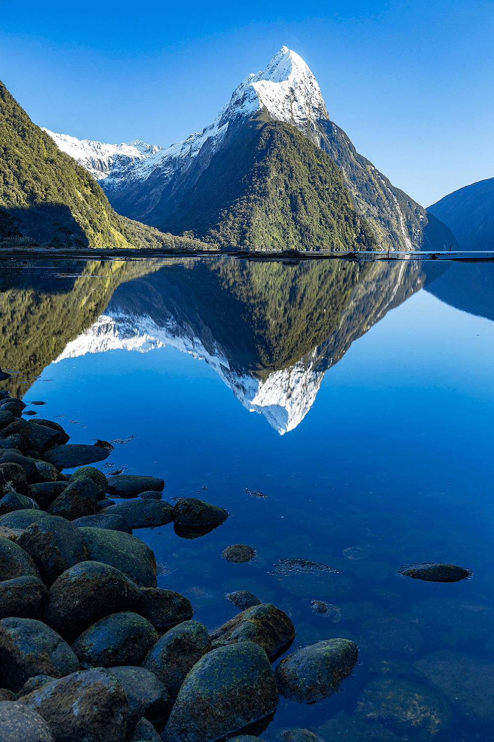 Image of New Zealand mountains by @Jamessmartphotography