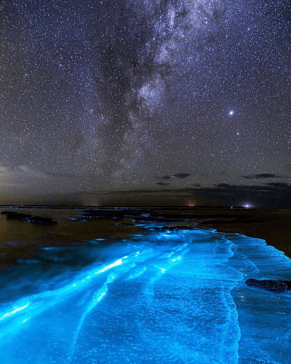 Image of bioluminescent algae taken on Anzac Day 2020 by @jordan_robins