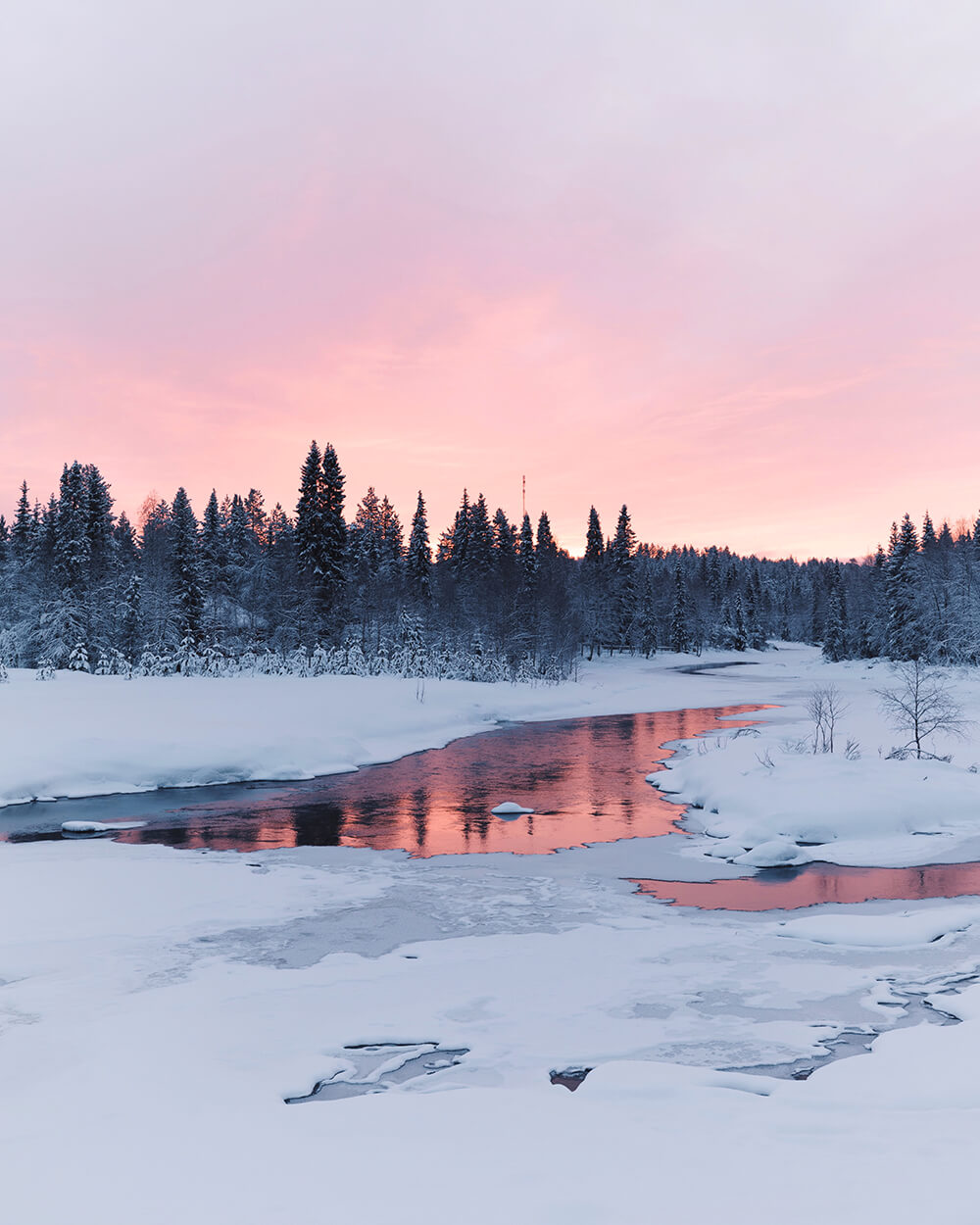 Image of a lake in the Pallas-Yllästunturi National Park. Photo by Elaine Li
