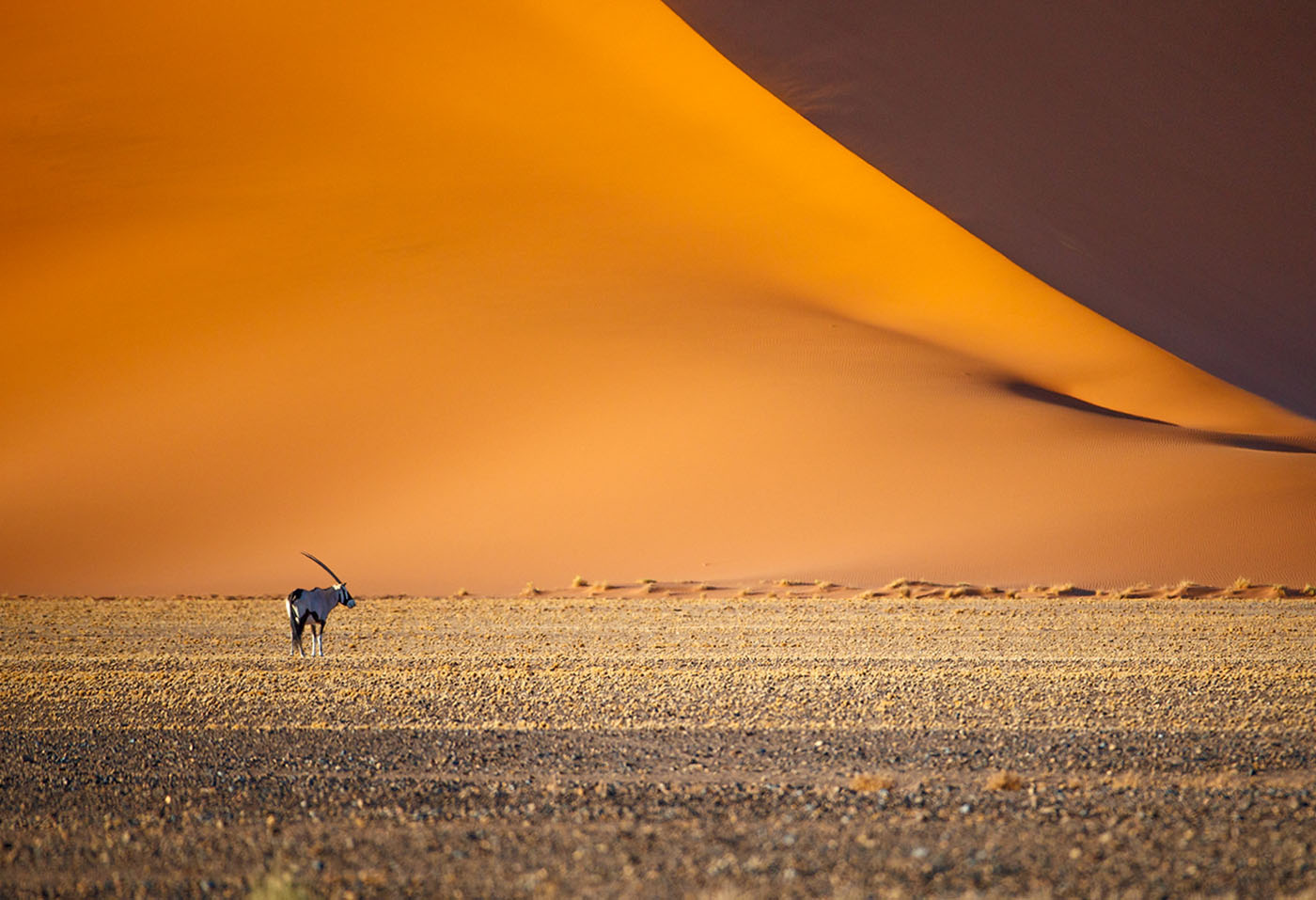 Sossusvlei and the Dunes of Fire