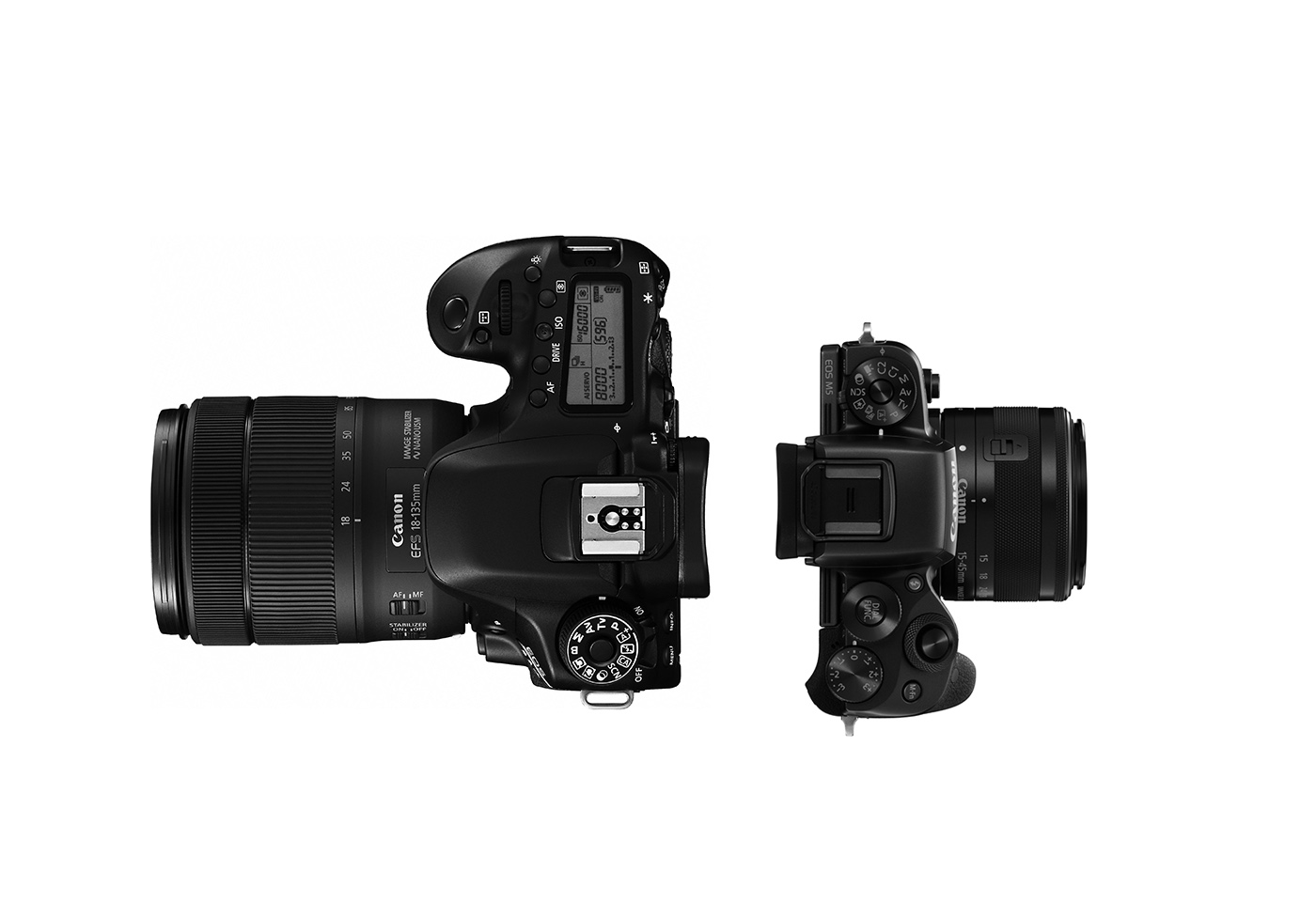 Mirrorless vs DSLR Cameras: Which is Right for You? | Canon Australia